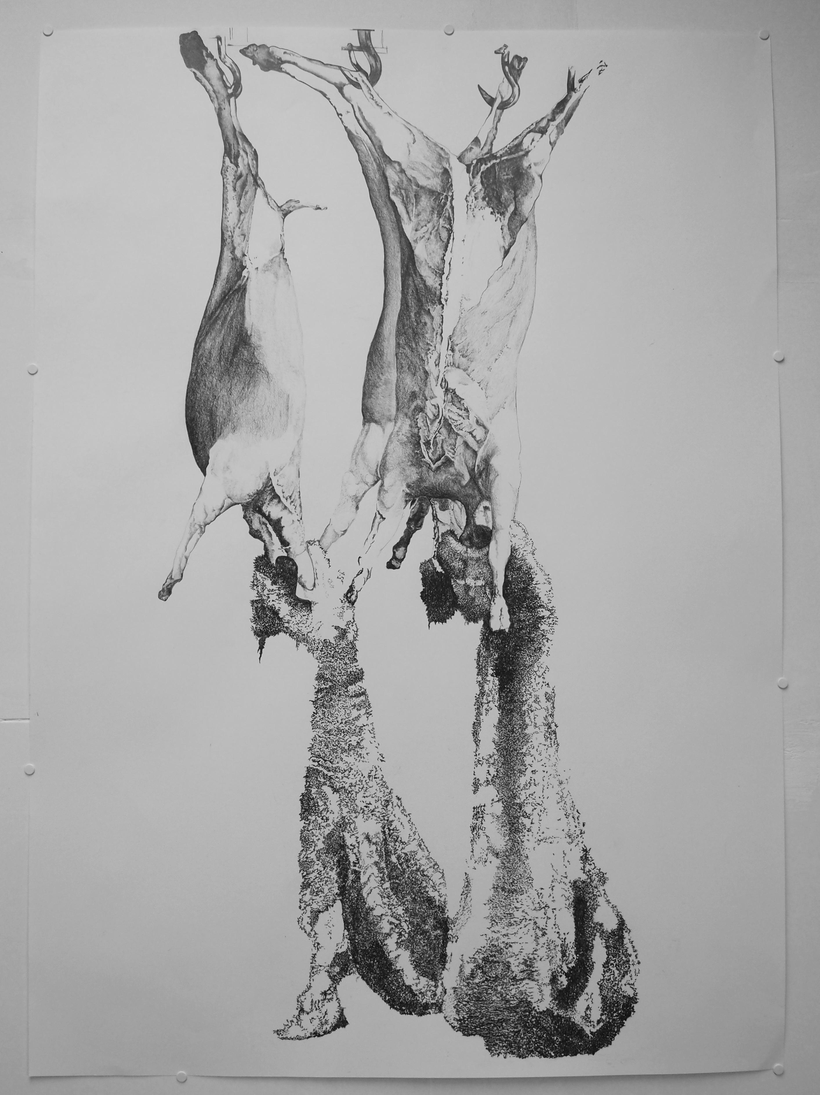 Agnus dei, dessin à la mine graphite