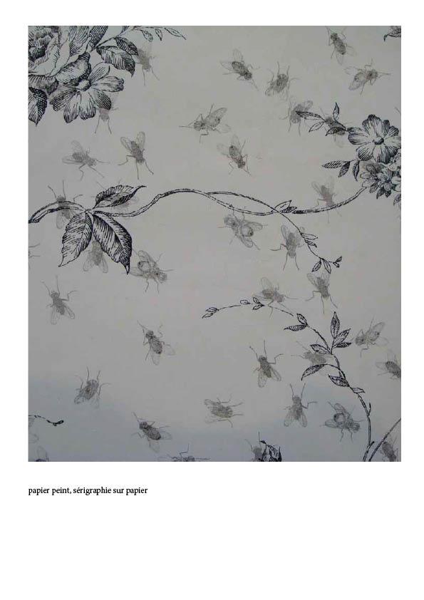 Papier peint augmenté, sérigraphie sur papier peint.